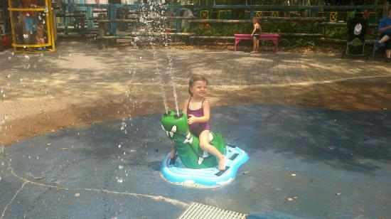 Tampa's Lowry Park Zoo: Very small splash pad