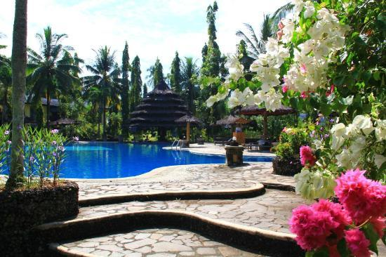 Tasik Ria Resort Manado: Pool