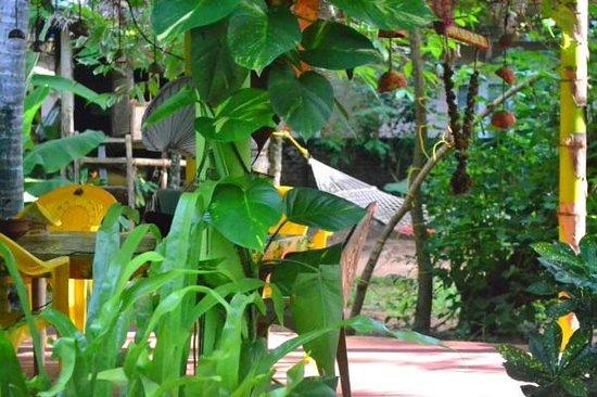 Shiva Garden: Garden