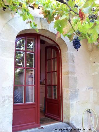 Saint-Leon, França: porte de la cuisine avec raisin à portée de main...