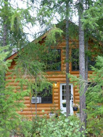 Canadian Bear Guesthouse: View from Outside cabin