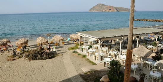 Rania Beach Hotel: restaurant Olive Tree, op het hotelterrein
