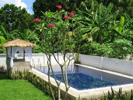 Pavana Resort