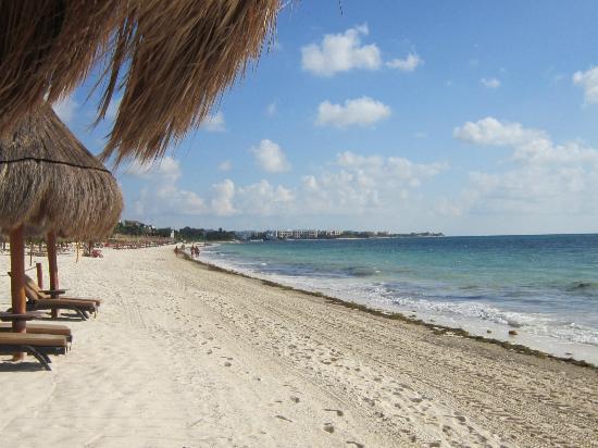 أوشن كورال آند توركويسا - شامل جميع الخدمات: Beach 