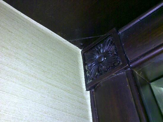 Shangri-La Hotel Jakarta: cobweb