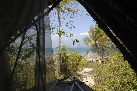 Chumbe Island Coral Park: View from the bedroom