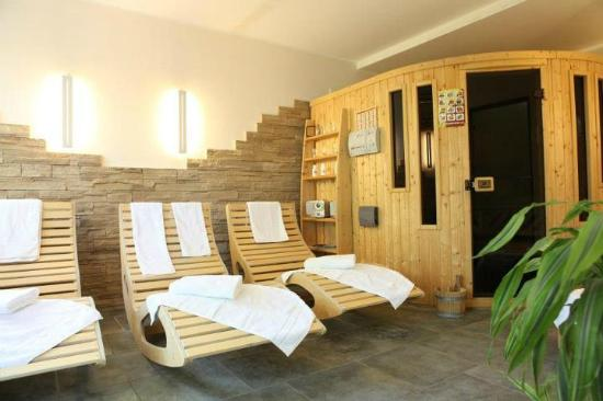 Alte Postvilla : Sauna