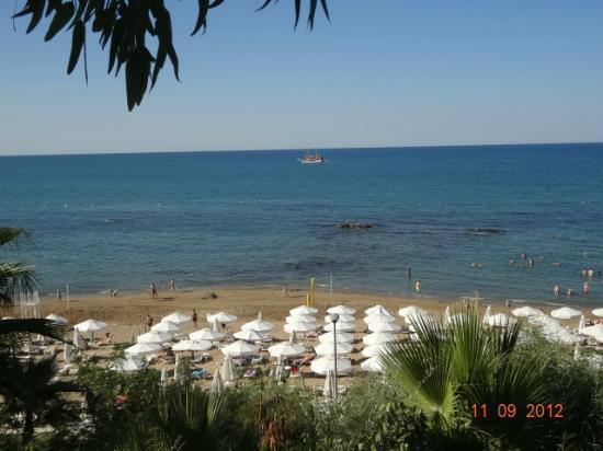The Sense De Luxe Hotel: пляж