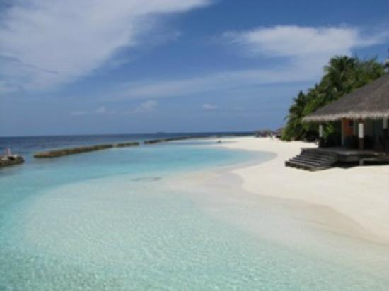 Ellaidhoo Maldives by Cinnamon: the dive centre and beach