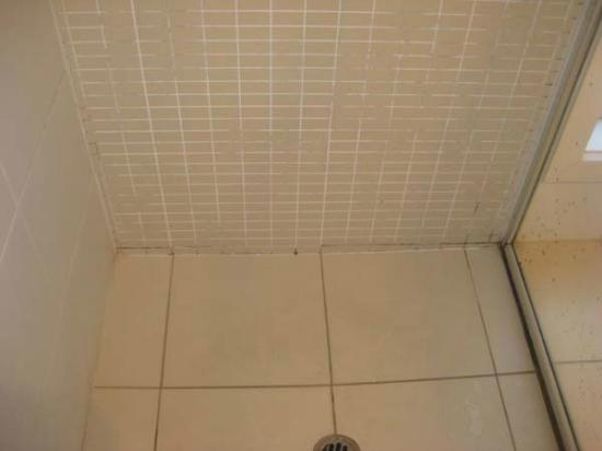 La Loft Apartments Unley: Ewww!  Ensuite shower