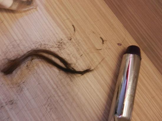 Premiere Classe Roissy - Villepinte - Parc Des Expositions: my hair :(