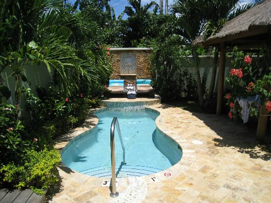 Sandals Negril Beach Resort & Spa: Our private pool area!