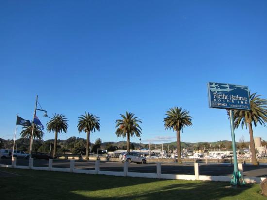 Pacific Harbour Motor Inn: 雰囲気の良いハーバーが部屋から見えます。