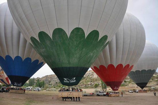 Discovery Balloons: Flying Flowers