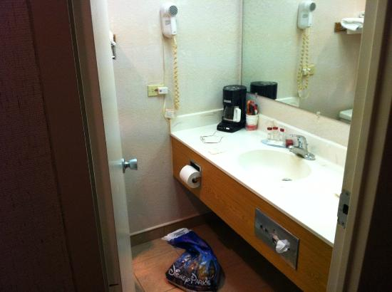 Ramada Pocatello: Bathroom sink