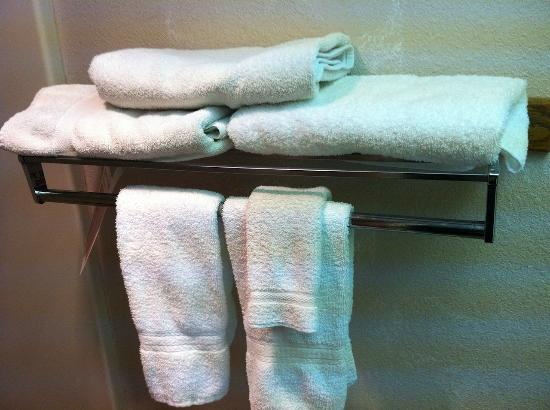 Travelodge Pocatello: Towels