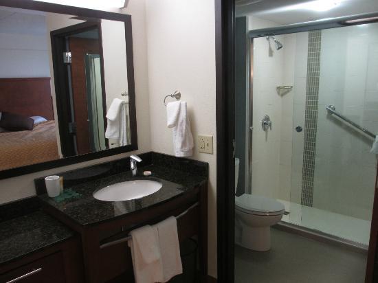 Hyatt Place Charlotte Airport/Tyvola Road: Room