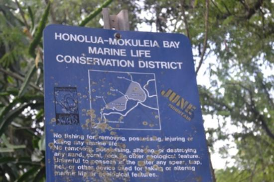 The Ritz-Carlton, Kapalua: Honolua Conservation District, just down the street from hotel