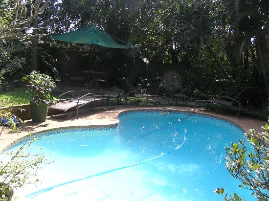 Santa Lucia Guesthouse: The pool
