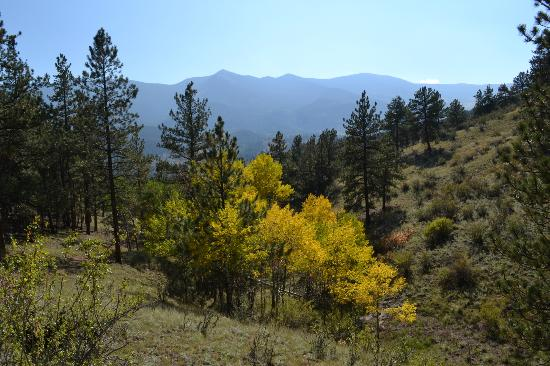 "North Fork Ranch: ""The view from a hiking trail"""