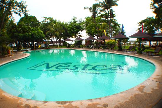 Matabungkay Beach Resort & Hotel: pool