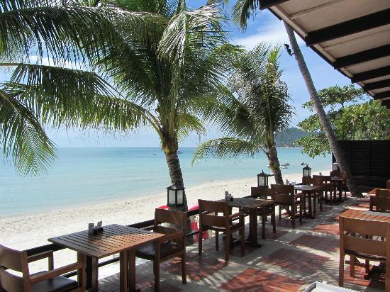 Banana Fan Sea Resort: Restaurant Terrace with Beachview