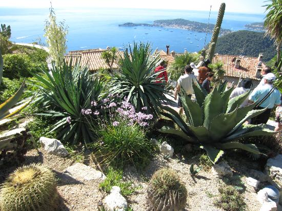 From The Top Picture Of Le Jardin Exotique D 39 Eze Eze