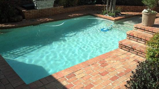 Melville Manor Guest House: Piscina