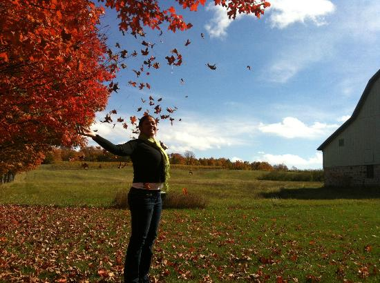 Shady Lane Cellars: Beautiful Scenery on the Wine/Fall Color Tour