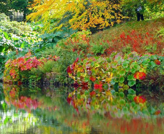 Lyme Park: Gardens