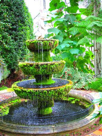 Lyme Park: Greenhouse