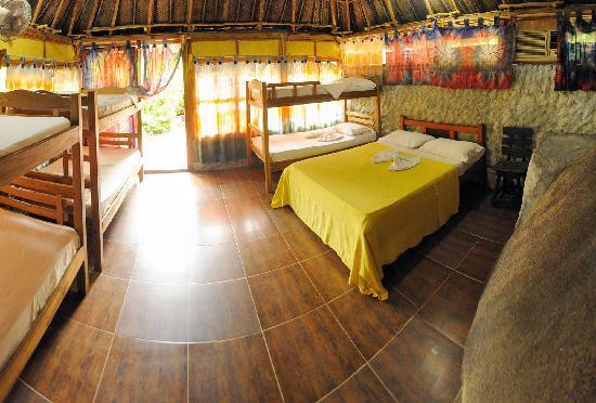 Ecohostal Yuluka: cabaña compartida