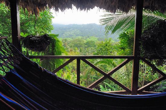 Ecohostal Yuluka: vista a la montaña
