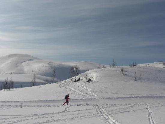 Det Rode Huset: Winter wonderland - cross country ski slopes nearby