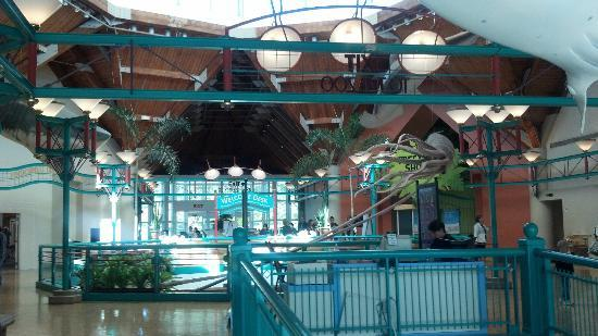 St. Louis Zoo: Interior of the Living World Building