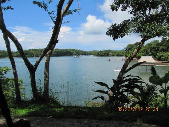 Hotel Bocas del Mar: View from Garden
