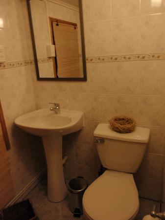 Hostal Las Leñas: Baño privado de habitacion