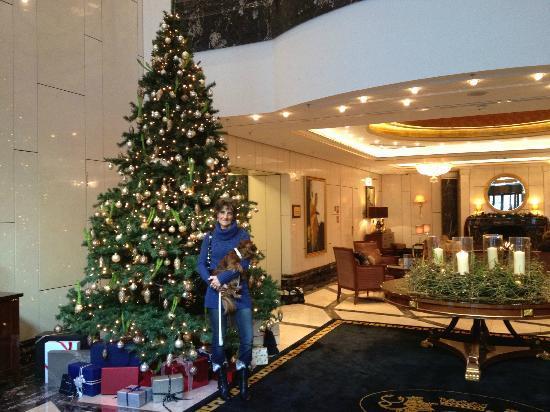 Breidenbacher Hof, a Capella Hotel: Lobby of the hotel