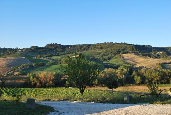 Agriturismo Cioccoleta: Breathtaking View of Rolling Hills