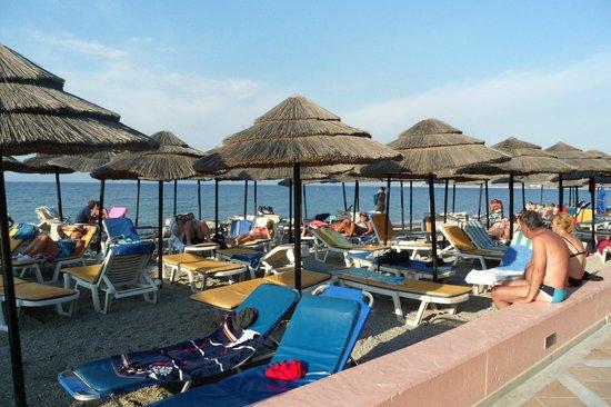 Loungers at beach both sides of beach bar