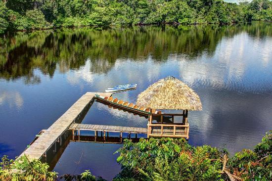 La Selva Amazon Ecolodge: Hotel's dock