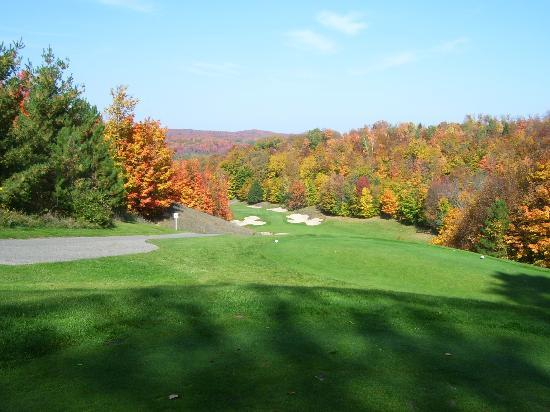 Treetops Resort: Look down a Par Four fairway from tee blocks