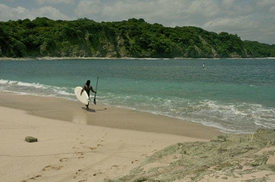 Experience Nosara Adventure Tours: Costa Rica SUP Adventures