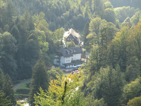 Waldhotel Forellenhof: The hotel from top of a hill
