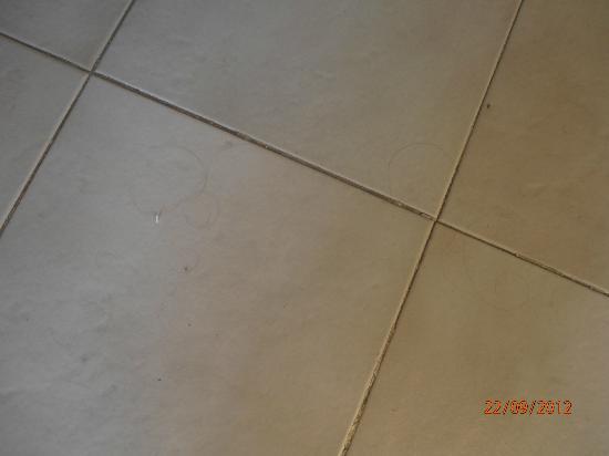 Alborada Apart Hotel : Un tappeto di capelli bleeeeea...