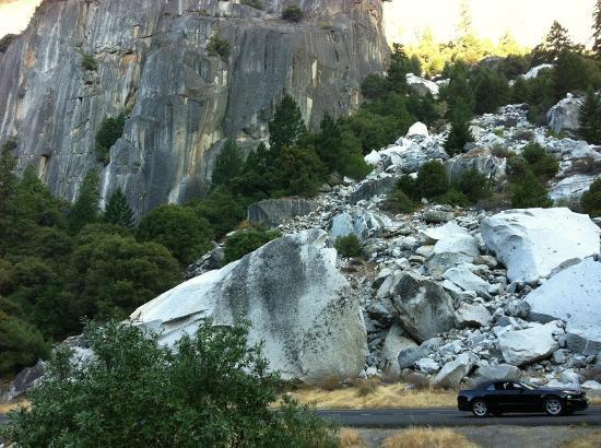يوسميتي فيو لودج: Yosemite 