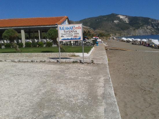 Roseland Hotel: beach bar
