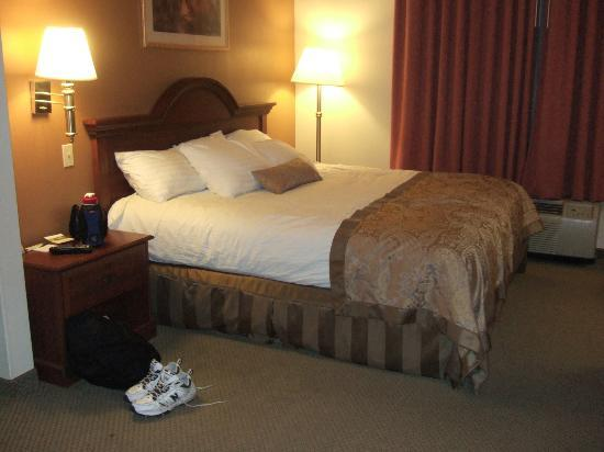 Wingate by Wyndham Streetsboro/Cleveland Southeast: King Size Bed