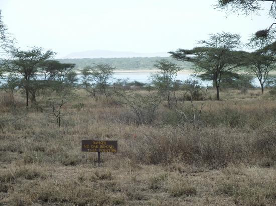 Ndutu Safari Lodge: Lake view.