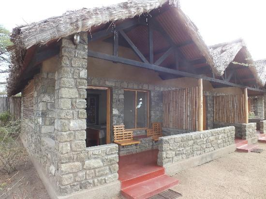 Ndutu Safari Lodge: Outside where you can sit and watch the wildlife pass by.